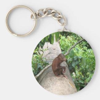 Orangutan Forgets Basic Round Button Keychain