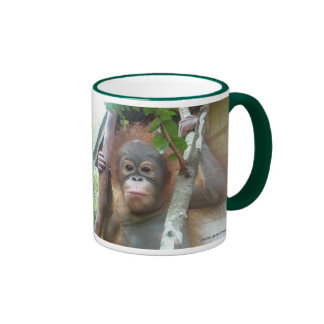 Orangutan Foundation International rescued orphan Ringer Coffee Mug