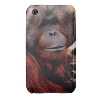 Orangután Funda Para iPhone 3
