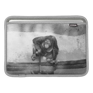 Orangután Fundas Macbook Air