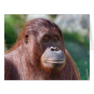 Orangutan Girl Card