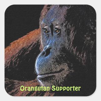Orangutan Great Ape Primate Stickers