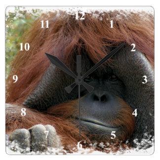 Orangutan Great Apes Cute Nature Wall Clock