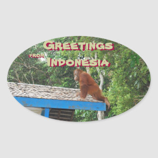 Orangutan Hello from Indonesia Oval Sticker