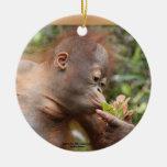 Orangutan Holiday Treats Double-Sided Ceramic Round Christmas Ornament