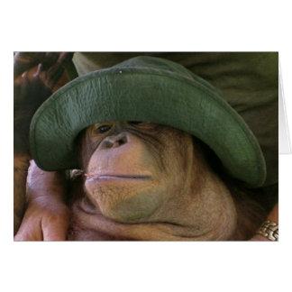Orangutan in Army Hat Card