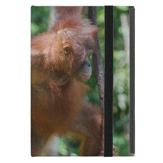 Orangutan in Borneo Rainforest Case For iPad Mini