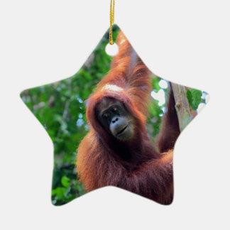 Orangutan in rainforest jungle Sumatra Ceramic Ornament