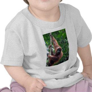 Orangutan in Sumatra rainforest Tee Shirt