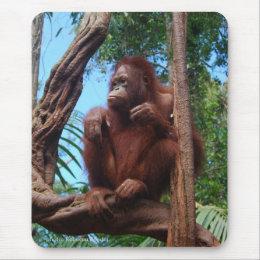 Orangutan in Sunshine Mouse Pad