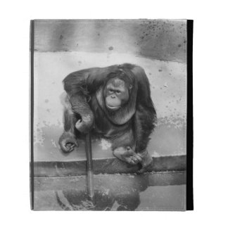 Orangutan iPad Cases