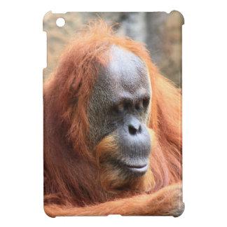Orangutan iPad Mini Cases
