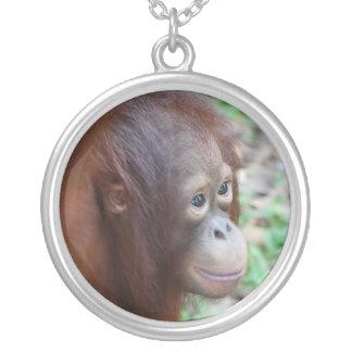 Orangután Joyerias