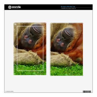 Orangutan Kindle Fire Skin