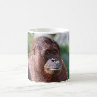Orangutan Lady Coffee Mug