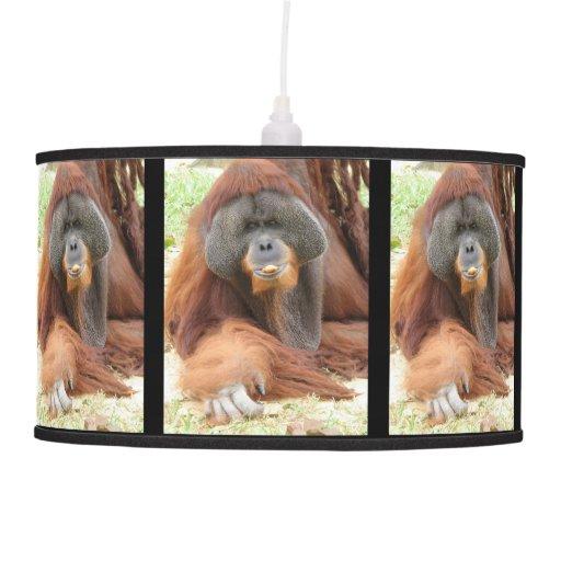Orangután Lámpara De Techo