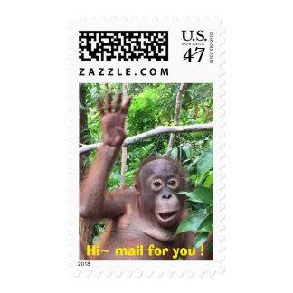 Orangután lindo del hola del animal que agita sellos