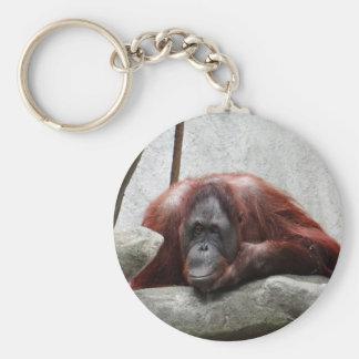 Orangután Llavero Personalizado