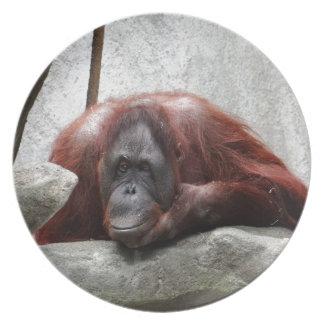 Orangutan Melamine Plate