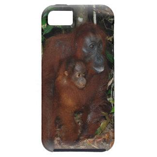 Orangután Moher y bebé en Borneo iPhone 5 Case-Mate Funda