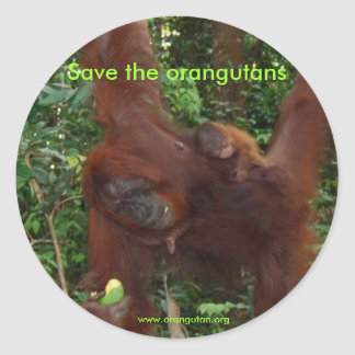 Orangutan Mother and Baby in Natural Habitat Classic Round Sticker
