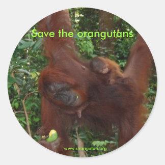 Orangutan Mother and Baby in Natural Habitat Round Sticker