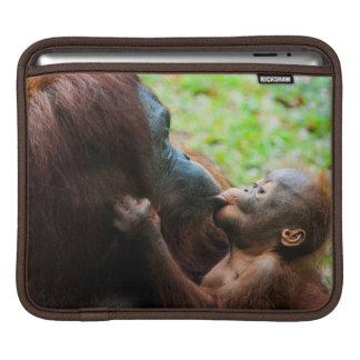 Orangutan mother and baby iPad sleeve