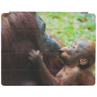 Orangutan mother and baby iPad smart cover