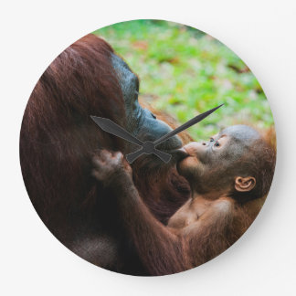 Orangutan mother and baby large clock