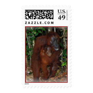 Orangutan Mother and Baby near Camp Leakey Stamp