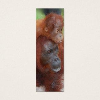 Orangutan  Mother and Baby Photo Mini Business Card
