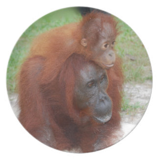 Orangutan Mother and Baby Dinner Plate