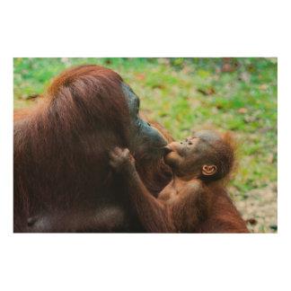 Orangutan mother and baby wood prints