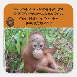 Orangutan New Address Stickers