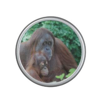 Orangutan Speaker