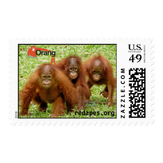 Orangutan Outreach 3 amigos stamps