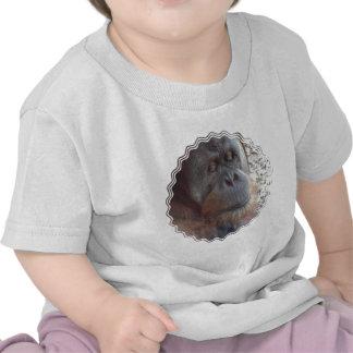 Orangutan Photo Baby T-Shirt
