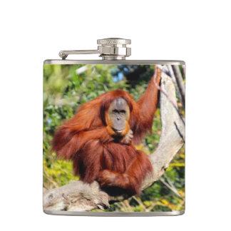 Orangutan photo flask