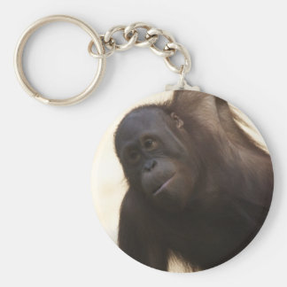 Orangutan Photo Keychain