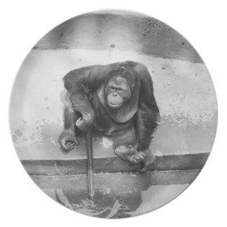 Orangutan Plates