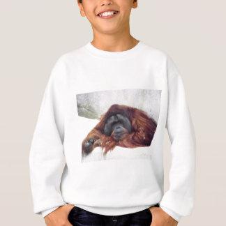Orangután Playeras