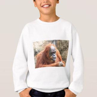 Orangután Poleras
