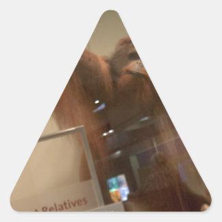 Orangutan (Pongo abelii) Triangle Sticker