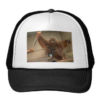 Orangutan (Pongo abelii) Trucker Hat