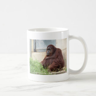 Orangutan Portrait Coffee Mug