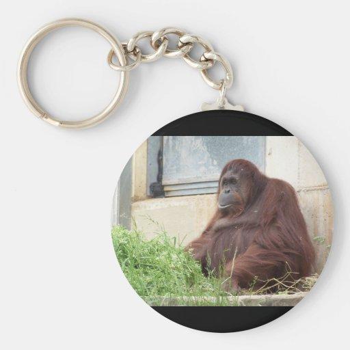 Orangutan Portrait Keychain