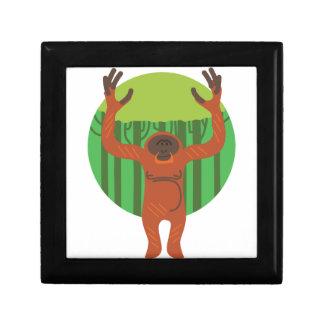Orangutan Primate Jewelry Box