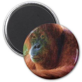 Orangutan Primate Portrait Wildlife Art Gift 2 Inch Round Magnet