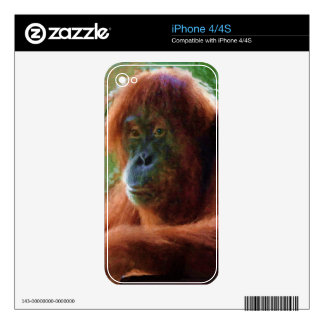 Orangutan Primate Portrait Wildlife Art Phone Skin Decal For The iPhone 4