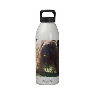 Orangutan_Pumpkin_Eater,_ Drinking Bottle
